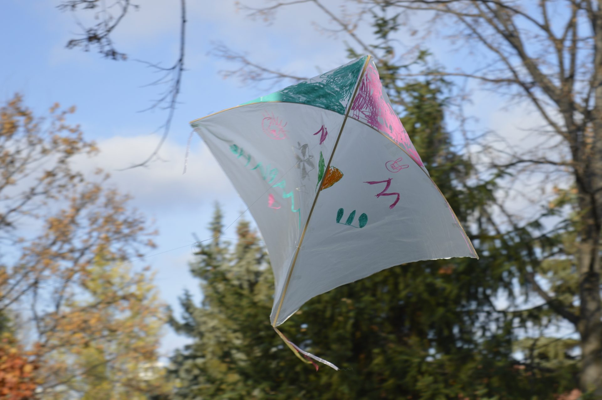 kites_of_solidarity_6